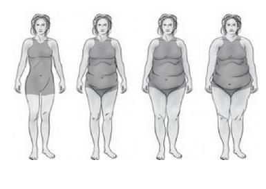 graisse-en-exces2